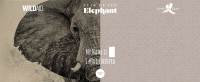 2016 – The First Ever Year of the Elephant?